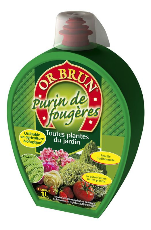 Purin de fougères OR BRUN