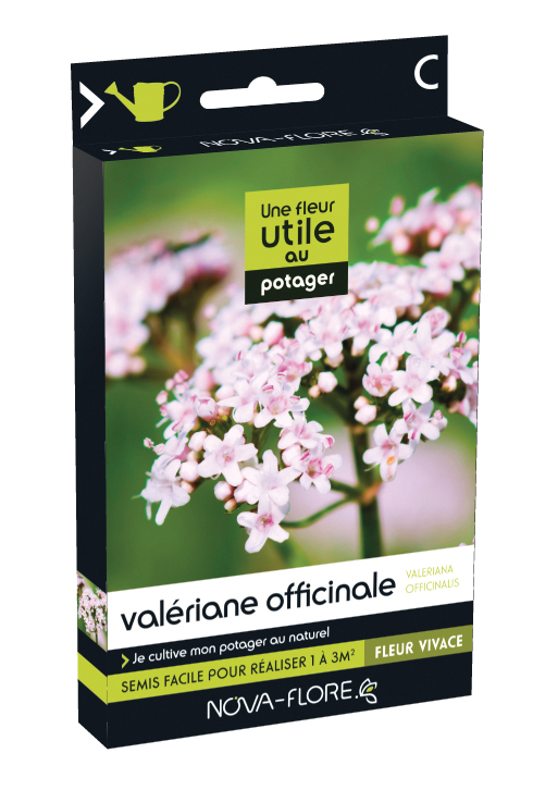 Valériane officinale